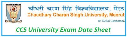 CCS University Date Sheet 2019 (Declared) CCSU BA BSc BCom MA MSc M Com