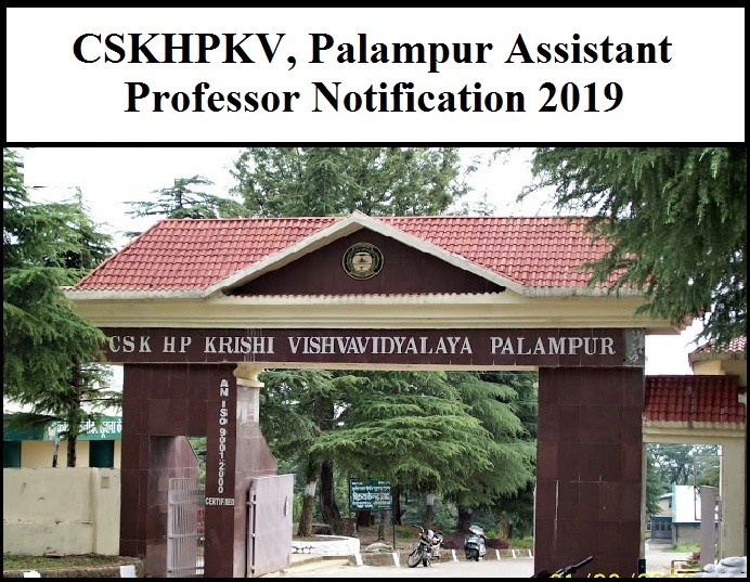 CSKHPKV Recruitment 2019 Palampur Assistant Professor Notification 2019